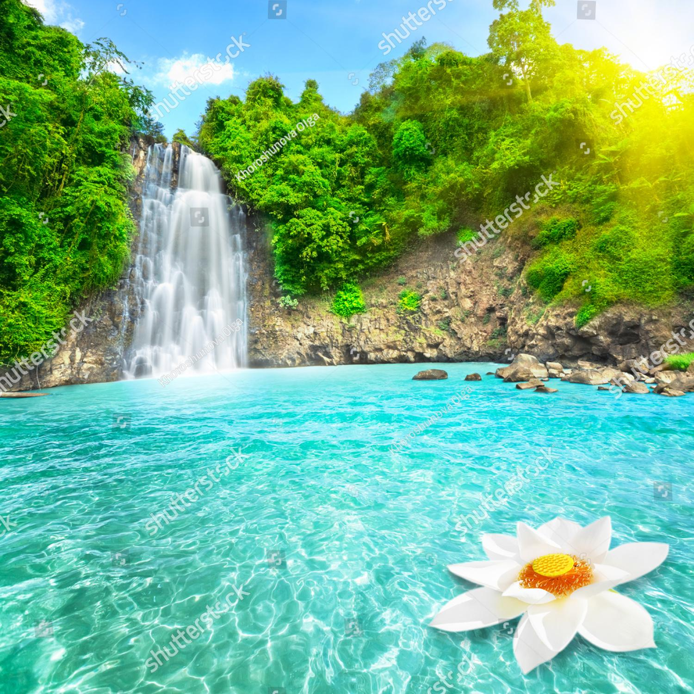 Водопады в цветах
